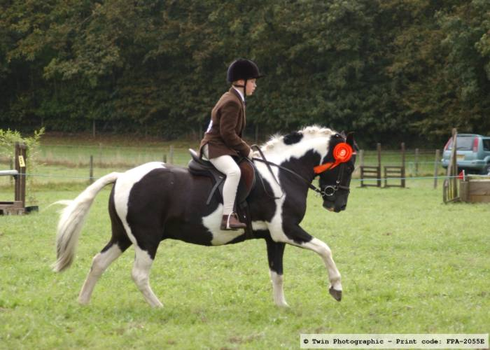Pic-8-first-pony-class